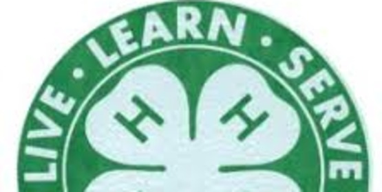 4-H Leaders…MARK the Date! 