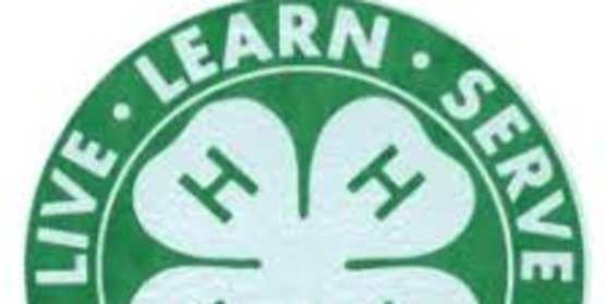 4-H Club Reorganization (Otsego)