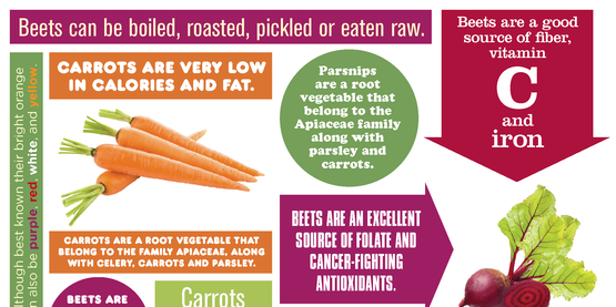 Root Vegetables Infographic