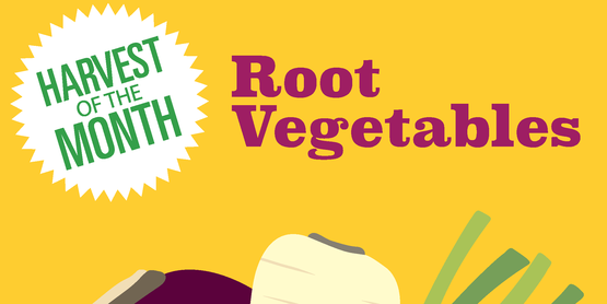 Root Vegetables Poster