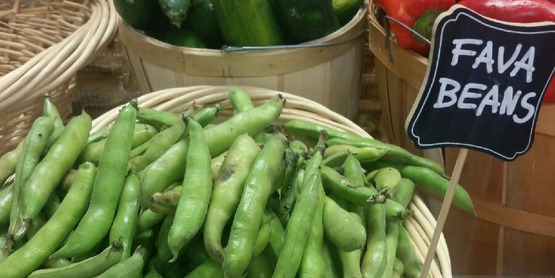 Fava beans donated by Sycamore Farms on display at Florida Community Food Pantry.