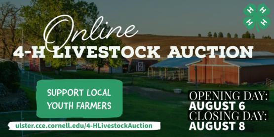online livestock auction