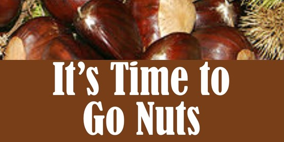 It's Time to Go Nuts