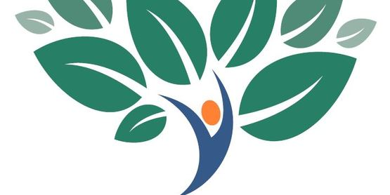 Sullivan County Workplace Wellness Summit