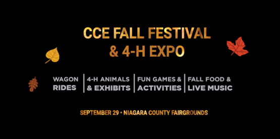 CCE Fall Festival & 4-H Expo
