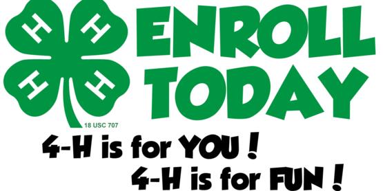 4-H enrollment night