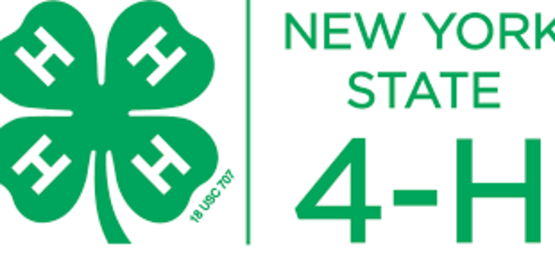 NY State 4-H
