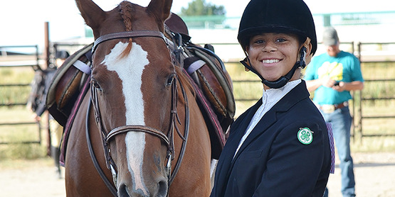 4-H Horse Advisory