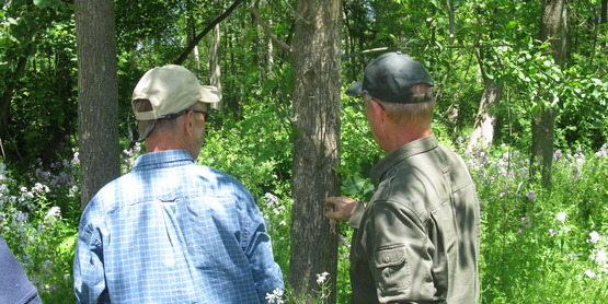 Master Forest Owner Training