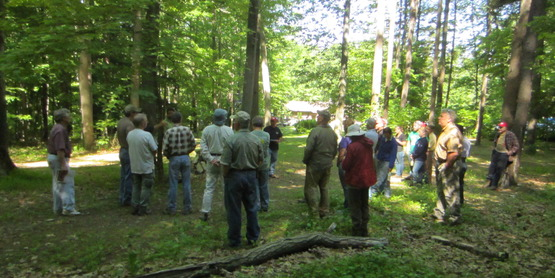 New York Forest Owners Association Fall Woodswalk
