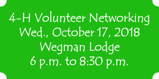 4-H Networking Event