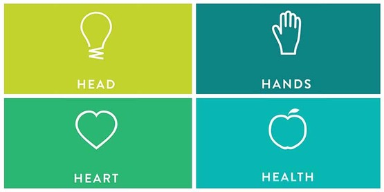 head-heart-hands-health  850x425