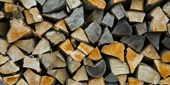 """""""Firewood Stacked Up to Dry Showing Annual Rings"""""""