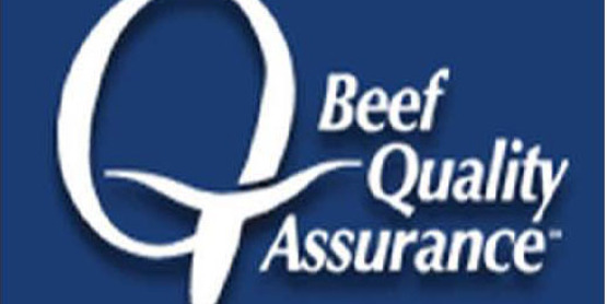 Cornell Cooperative Extension | Beef Quality Assurance Training