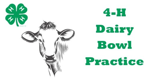 Dairy Bowl