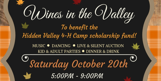 Wines in the Valley