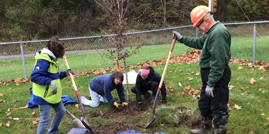 Manlius Community Tree Planting