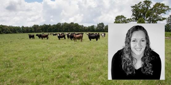 Mackenzie Waro for Finishing Cattle class 11/2018