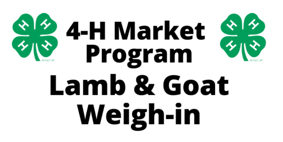 4-H Lamb & Goat Weigh In