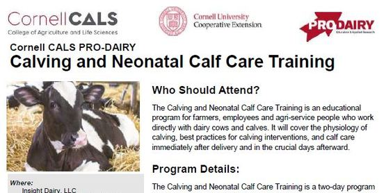 Calving and Neonatal Calf Care Training
