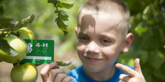 4-H Enrollment Deadline for New Members