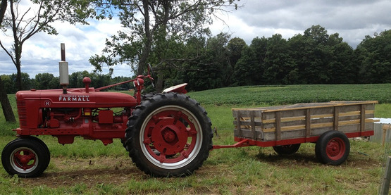 Tractor at Just A Few Acres Farm