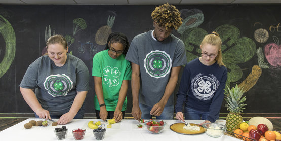 4-H Nutrition