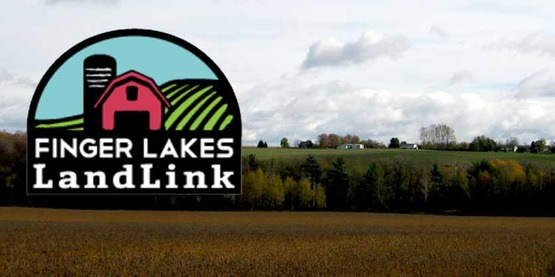 Looking for land to farm or have land to lease? Visit Finger Lakes LandLink.