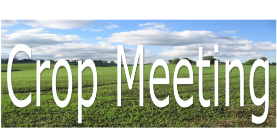 Richardson's Crop Meeting Feb 26, 2019