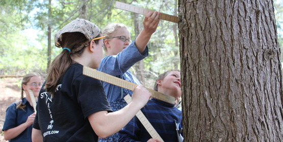 Intro to 4-H Forestry Program