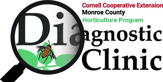 Diagnostic Clinic Logo
