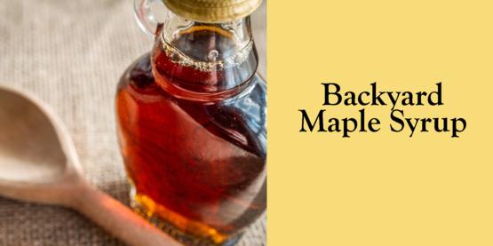 2019 Backyard Maple Syrup