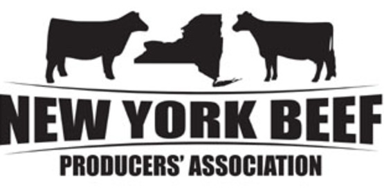 "​""Dairy cross bred calf - an opportunity for the dairy and beef industries?"""