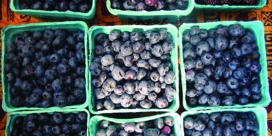 Buy locally grown blueberries at Farmers' Markets in your area!