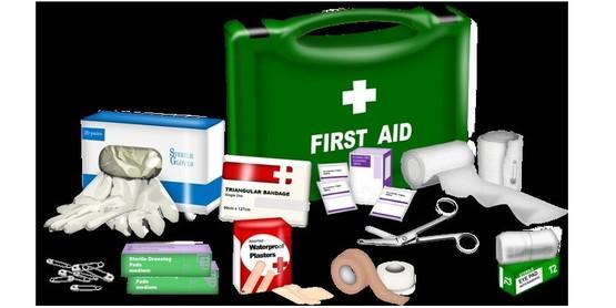 4-H Basic Aid Training