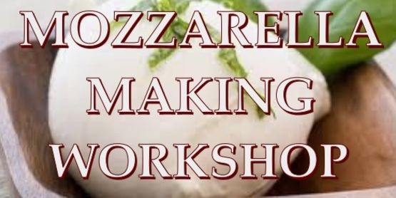 Mozzarella Cheese Making Workshop