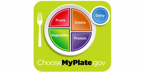MyPlate shows how much space each food group should take on your plate.