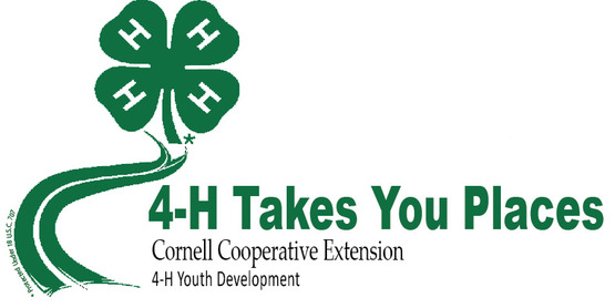 CANCELLED - 4-H Martin Luther King Day Activities