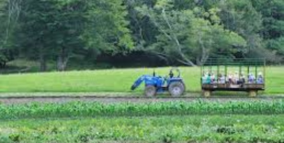 Get started with Agritourism