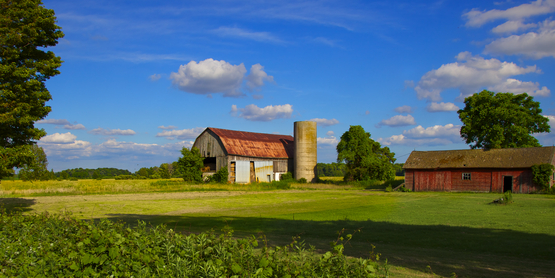 Exploring the Small Farm Dream: Is Farming Right For You?