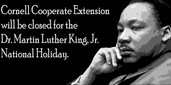 Office closed for Martin Luther King Day