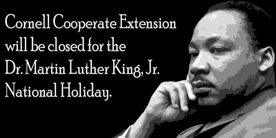 Closed in Observance of Dr. Martin Luther King Jr. Day