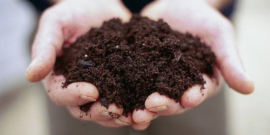 Composting is eco-friendly, and a valuable resource for your garden!