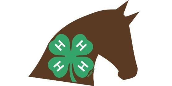 Horse Clover