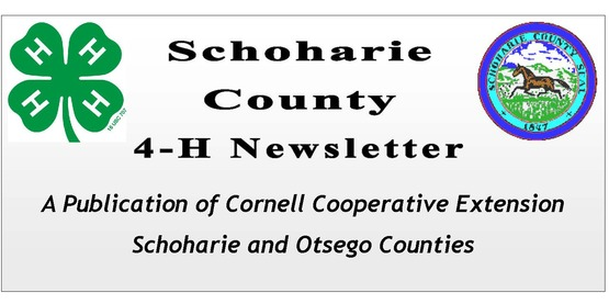 Schoharie County 4-H Logo