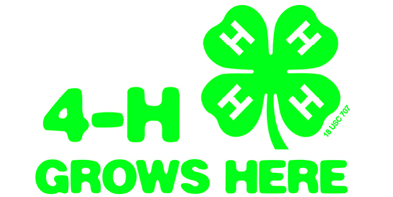 4-H Grows Here spotlight