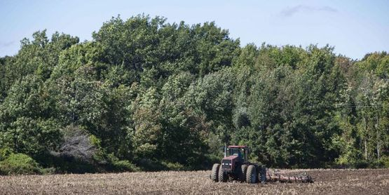 Farmland Protection