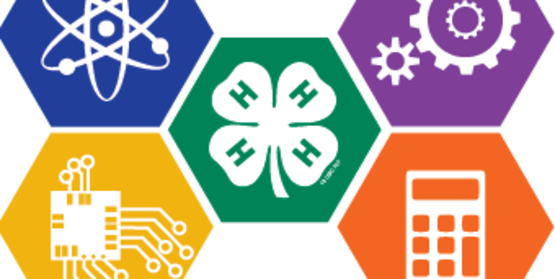 1st Annual 4-H STEM Fair