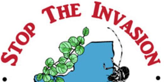 Stop Invasives