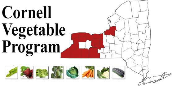 Cornell Vegetable Program map